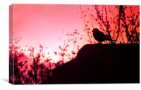 Bird in the Sunset, Canvas Print