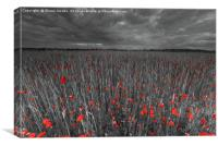 Poppy field , Canvas Print