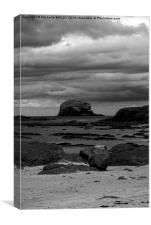 Bass Rock At Low Tide, Canvas Print