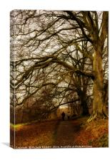 Wellies and Woollies, Canvas Print