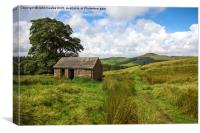 An old Barn with Shutlingsloe Hill in the distance, Canvas Print