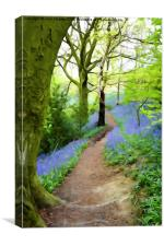 Target Wood Bluebells, Canvas Print