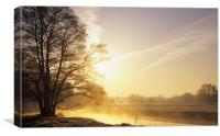 River Wey Misty Morning, Canvas Print