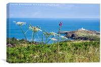 Summer view to Point Lynas Anglesey, Canvas Print