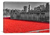 Sea Of Red, Canvas Print