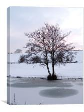 Snowy Canalside Landscape, Canvas Print