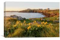 View of Newquay from Towan Headland, Canvas Print