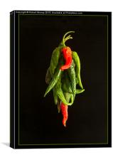 Drying the Chillies, Canvas Print