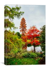 Reds and Greens of Autumn, Canvas Print