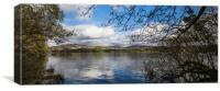 Trees overhanging Lake Windermere, Canvas Print