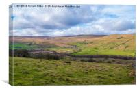 Raydale, North Yorkshire., Canvas Print