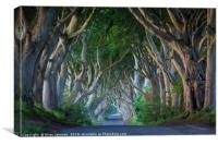 Dark Hedges Dawn, Canvas Print