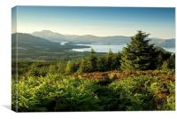 Ben Lomond, Canvas Print