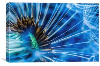 Abstract flower, Canvas Print