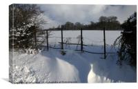 Snow scene at Whitlingham Country Park, Canvas Print