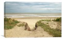 Looking out at Covehithe, Canvas Print