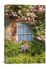 Stone cottage in Scotland with window and climbing, Canvas Print