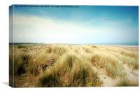 Beautiful beach with sand dunes and blue sky in UK, Canvas Print