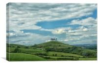 Colmers Hill., Canvas Print