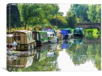The Tranquil Chelmer and Blackwater Navigation, Canvas Print