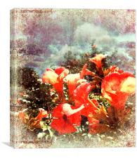 Red Trumpet Flowers, Canvas Print