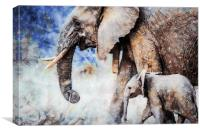 Elephant and Calf, Print, Canvas Print