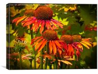 """ECHINACEA IN THE SUNSHINE"", Canvas Print"