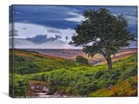 """""""THE COLOURS OF THE MOORS"""", Canvas Print"""