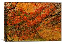 """""""ABSTRACT AUTUMN LEAVES"""", Canvas Print"""