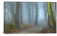 """""""A CHINK OF LIGHT IN A MISTY WOOD"""", Canvas Print"""