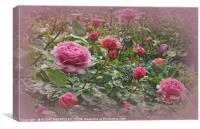 """Victorian rose garden2"", Canvas Print"