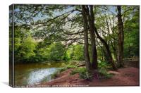 """""""Along the river side"""", Canvas Print"""