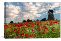 """Old Windmill in the poppy fields"", Canvas Print"