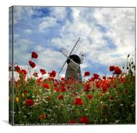 """Windmill in the poppy field"", Canvas Print"
