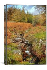 """""""Mountain stream in Wasdale """", Canvas Print"""