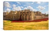 Tower of London with Poppies, Canvas Print