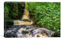 Mill Gill Force, Canvas Print