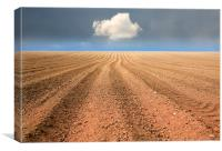 A Ploughed Field and a Cloud, Canvas Print