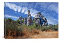 Short Tailed Eagle over El Torcal, Canvas Print