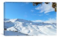 Covered with snow,, Canvas Print