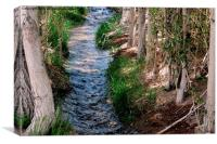A stream of clean water in the village,, Canvas Print