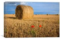 Straw Bales and poppies, Canvas Print