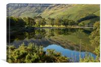 Buttermere Trees, Lake District, Canvas Print