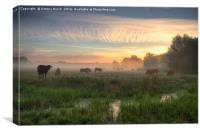 Moos in the Mist, Canvas Print