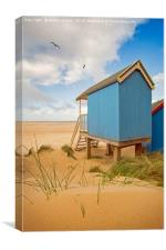 Beach Huts and Birds, Canvas Print