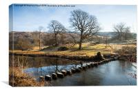 Stepping Stones on the Rothay, Canvas Print