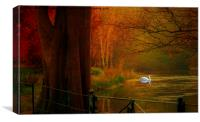 Autumn the season of colour  Hampstead-heath Lond, Canvas Print