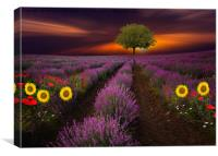 Nature always wears the colors of the spirit.     , Canvas Print