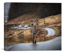 Right of Way, Canvas Print