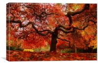 Awesome autumn, Canvas Print